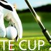 Werte Cup 2017